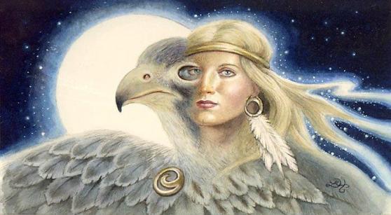 Shaman falcon